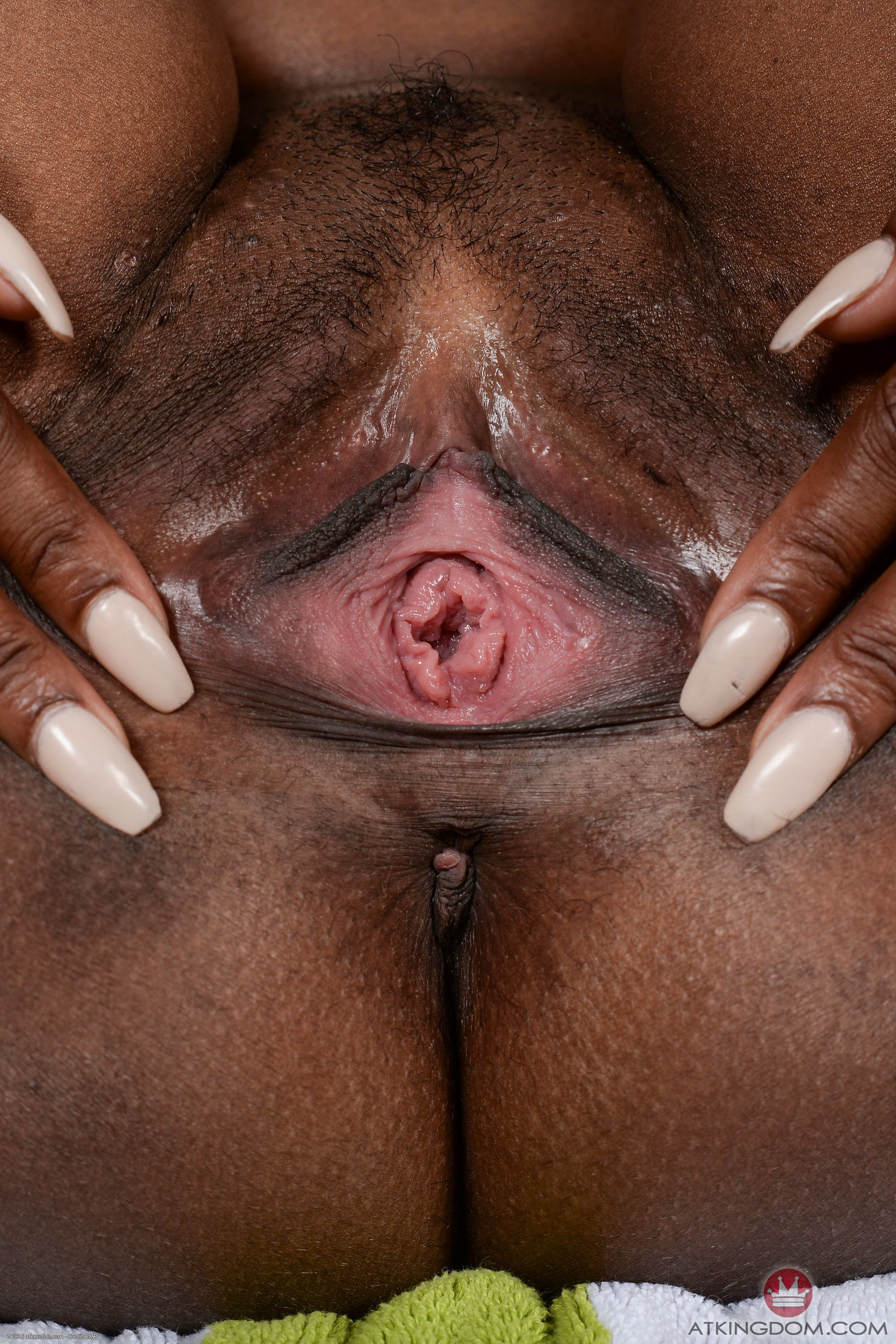 images-of-african-american-naked-vagina